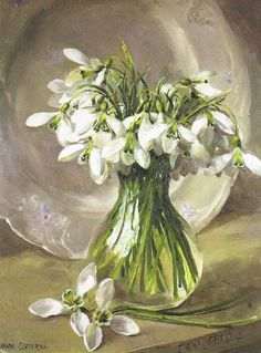 Cotterill Anne, Cotterill 1933, Flowers Art, Flowers Fruits, Spring Flowers, Snowdrop Paintings, Cotterill Paintings, Anne Coterill, Snowdrop Arrangement