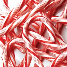 Candy canes xx