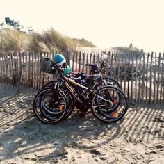 Chris at @BikeHireDirectFrance #CharenteMaritime enjoyed a family bike ride along the #beach at La Palmyre.... with such warm sunshine it almost felt like Summer!  For information on our great value bike hire visitwww.bikehiredirect.com:-)  #LesMathes #LaPalmyre #NouvelleAquitaine #France #BikeHireDirect #DispoVelo #Plage #Royan #Velo #Bike #Cycling #Cyclisme #cyclinginFrance #French Les Mathes, Ride Along, France, Sunshine, Felt, Bike, Warm, Beach, Summer