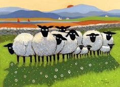 Sheep in a row.