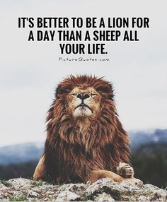 It's better to be a lion for a day than a sheep all your life. Picture Quotes.
