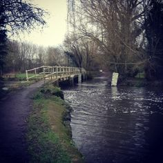 16.01: river running high on this morning's ride