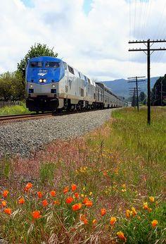 Happy Birthday (or anniversary), Amtrak!  May 1, 1971   -  42 years strong!  Amtrak's Starlight in Springfield Oregon
