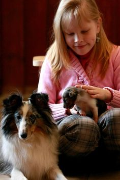 Girl with Sheltie and newborn puppy
