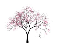 Cherry Trees is an algorithmic animation of a cherry tree, drawn in a pen drawing style