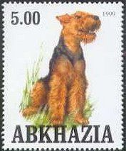 Airedale Terrier stamp from Altai
