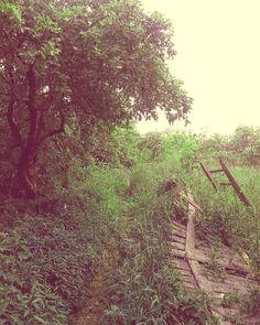 """reverie.walker: """"Мы находим место для того кого потеряли. Хотя мы знаем что острая скорбь после такой утраты сотрётся однако мы остаемся безутешны и никогда не сможем подобрать замену. Все что становится на опустевшее место даже если сумеет его заполнить остается чем-то иным. Так и должно быть. Это единственный способ продлить любовь от которой мы не желаем отречься.  #пейзаж #природа #осень  #холод #грусть #печаль #одиночество #landscape #nature #autumn #fall  #evening #twilight #snow #town…"""