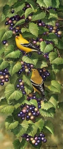 Artist: Dempsey Essick Edition: Image size: x 20 Released: 2005 Signed & numbered by the artist Watercolor Painting Techniques, Watercolor Paintings, Bird Artists, Art Music, Film, Photography, Movie, Photograph, Water Colors
