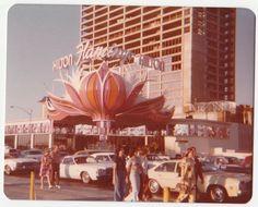 Vintage 70s Photo Old Las Vegas Flamingo Hilton Hotel Casino | eBay