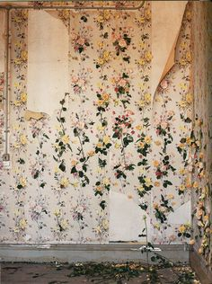 Backdrop of flowers. Photo Tim Walker