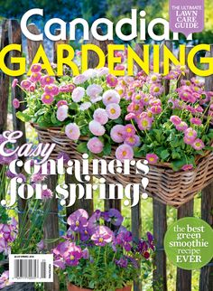 Easy containers for spring: the best green smoothie recipe ever, the ultimate lawn care guide and much more! Best Green Smoothie, Good Smoothies, Green Smoothie Recipes, Greens Recipe, Have You Tried, Lawn Care, Spring 2015, Gardening, Plants