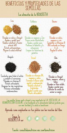 Beneficios y propiedades de las semillas- Los alimentos de la BIODIETA