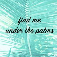 Find me under the palms