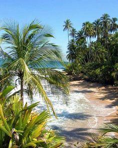 Costa Rica,Kc Bikinis