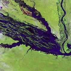 Brasil 13 Complejo de conservación de la Amazonia Central  Este sitio de más de seis millones de hectáreas es la zona protegida más vasta de la cuenca del Amazonas y una de las regiones del planeta de más rica biodiversidad