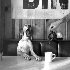 ...my day does not begin until I've had a cup...