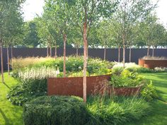 Lovely birch garden with cor-ten accents and lots of grasses and perennials