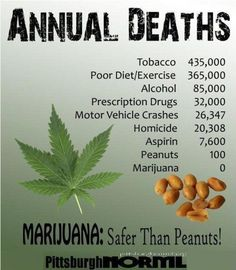 I have a problem with charts like these: while I'm in favor of medical marijuana, what charts like these don't take into account is how many motor vehicle accidents may be due to marijuana usage, which can have the same effect on the body as alcohol or prescription drugs. I wouldn't have a problem with legalizing marijuana for home (private) use, but not for public use, and I would wish it to be regulated the same way as alcohol is.