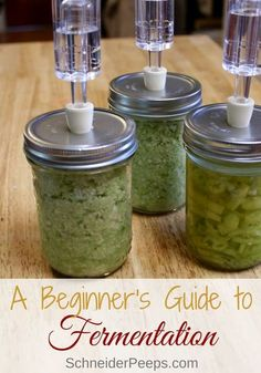 A Beginners Guide To Fermentation Young And Raw - A Beginners Guide To Fermentation By Danielle Arsenault Bold Brassica Kraut Weve Already Heard How Fermented Foods Can Heal Your Gut And Make Your Skin Glow Thanks To Health And Wellne Best Probiotic, Probiotic Foods, Fermented Foods, Cooking For Beginners, Recipes For Beginners, Beginner Cooking, Pickeling Recipes, Real Food Recipes, Protein Recipes