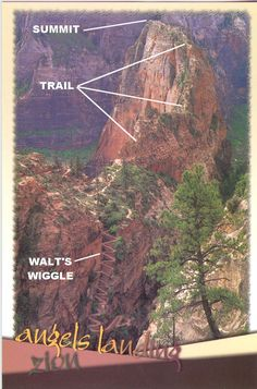 ANGELS LANDING in Zion National Park – Check! - - It's by far the most notorious hike to do in ZNP! Because not everyone makes it off alive! I've included a detailed description of this infamous hike so you can get an idea o…. Slot Canyon, Bryce Canyon, Capitol Reef National Park, Us National Parks, Zion National Park, Vacation Ideas, Utah Vacation, Rocky Mountains, Arizona