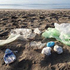 Meno packaging chiede #PlasticsStrategy. Vale anche x i #sacchettibio che in mare hanno stesso impatto di quelli in plastica. La soluzione è una: ridurre- anche al super. Speriamo che @MinisteroSalute @BeaLorenzin consentano di usare sacchetti riutilizzabili per frutta&verdura