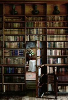 I would absolutely LOVE a library room with dark bookcases! Oh, and did I forget to mention the secret passage to the next room?