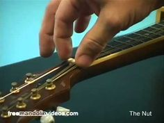 How To Adjust Your Mandolin Action - Full Version Guitar Strumming, Guitar Chords, Ukulele, Mandolin Lessons, Guitar Lessons For Beginners, Music Theory, Banjo, Action, Learning
