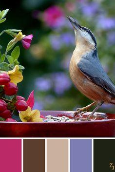 ZJ Colour Palette 55 #colourpalette #colourinspiration