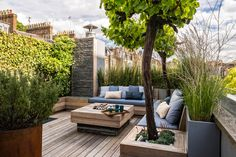 Roof Garden in Notting Hill
