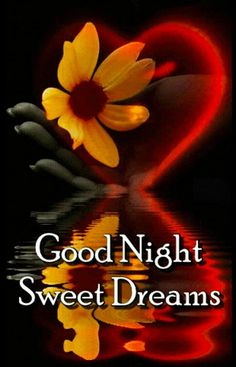 Good Night Images For Whatsapp Funny Good Night Images, Photos Of Good Night, Good Night Love Messages, Good Night Love Quotes, Good Night Prayer, Good Night Blessings, Good Night Greetings, Good Night Wishes, Good Night To You