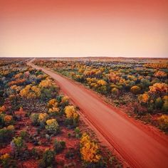 Outback colours in the magical Red Centre of the Northern Territory. Western Australia, Australia Travel, Outback Australia, Nature Landscape, Creative Landscape, Mountain Landscape, Urban Landscape, Abstract Landscape, Photos Black And White