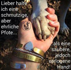 Stimmt total...  Die Liebe eines Tieres ist aufrichtig und bedingungslos!!!!!!