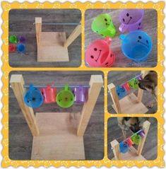 Unique Dog Toys 67 Ideas for diy dog games enrichment activities.Unique Dog Toys 67 Ideas for diy dog games enrichment activities Dog Enrichment, Enrichment Activities, Brain Games For Dogs, Dog Games, Diy Dog Toys, Pet Toys, Diy Pour Chien, Backyard Toys, Dog Puzzles