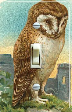 OWL Vintage Art Switch Plate (single) --  FREE SHIPPING--, by VintageSwitchPlates. $12