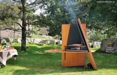 HETEROFOCUS - Wood-burning fireplace / gas / original design / closed hearth by Focus