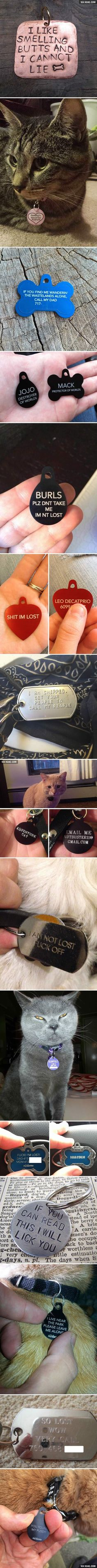 Hilarious Collar Tags For Pets Who Tend To Get Lost