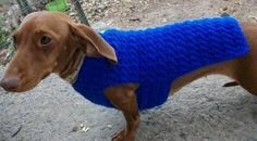 Dachshund and Small Dog Crochet Sweater