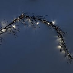 Pip Berry Lighted Garland, White in Holiday Holiday Décor Lighting at Terrain