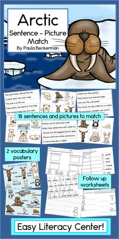 Arctic Sentence Picture Match is a fun reading center that combines animal facts with sight word reading - perfect for winter or Polar themes! TpT$