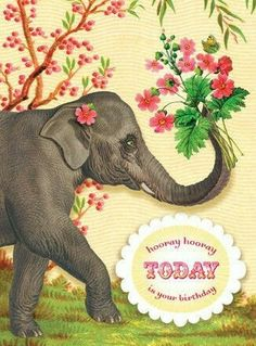 Today Is Your Birthday, Happy Birthday Quotes, Happy Birthday Wishes, Birthday Greetings, Happy Birthdays, Birthday Postcards, Vintage Birthday Cards, Vintage Cards, Bday Cards