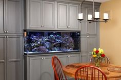 Kitchen Photos Fish Tanks Design, Pictures, Remodel, Decor and Ideas