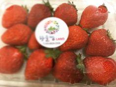 #딸기 #잘먹겠습니다 #감사합니다 #단골손님 께서 주신 #선물 #조카 랑 먹었습니다. #무한감동 #왕손 #왕손쌈밥