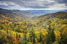 Questions To Ask Before Booking a Gatlinburg Cabin Vacation For Families - http://www.hearthsidecabinrentals.com/blog/smoky-mountain-vacation-tips/gatlinburg-cabin-vacation-for-families/