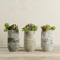 I'm in love with these ceramic planters and range of homeware from South African prêt-á-pot. They are Plett-based, but for those of you who live in Joburg, prêt-á-pot will be at the Handmade Contemporary Fair in October :) Ceramic Planters, Planter Pots, Contemporary Ceramics, Vases Decor, Garden Art, Stoneware, Glass Vase, Container, Pottery
