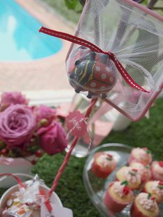 """Ella's Ladybird Party (ladybugs!)"" 