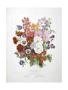 afca21039f8 A Bouquet Of Flowers Giclee Print by Elisa Champin at Art.com