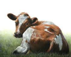 ** Visit a slaughterhouse; it will brand your soul for life. Nature Animals, Farm Animals, Animals And Pets, Animal Paintings, Animal Drawings, Cow Drawing, Deer Photos, Happy Cow, Cow Painting