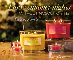 Papaya Passion & Jasmine Lime Citronella from Gold Canyon Candles...