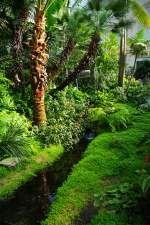 Cute Palmengarten