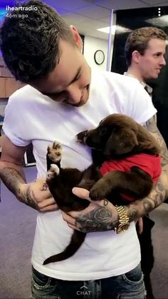Liam Payne Backstage at #Q102JingleBall with Puppies ❤️(6/12)